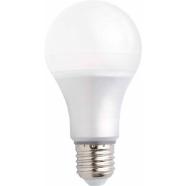 Ampoule LED E27 10W Ø6,5 cm 1020 Lm