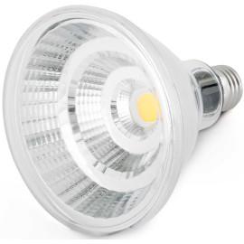 Ampoule LED E27 12W Ø12 cm 810Lm