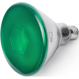 Ampoule LED verte E27 10W Ø12 cm 400Lm