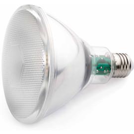 Ampoule LED E27 10W Ø12 cm 850Lm
